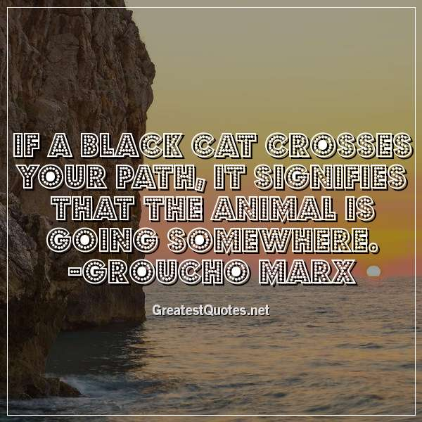 If a black cat crosses your path, it signifies that the animal is going somewhere. -Groucho Marx