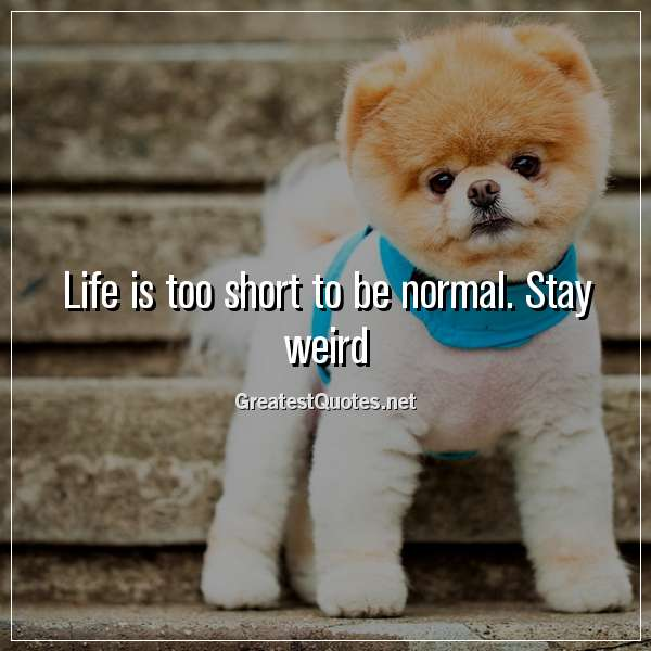 Quote: Life is too short to be normal. Stay weird.