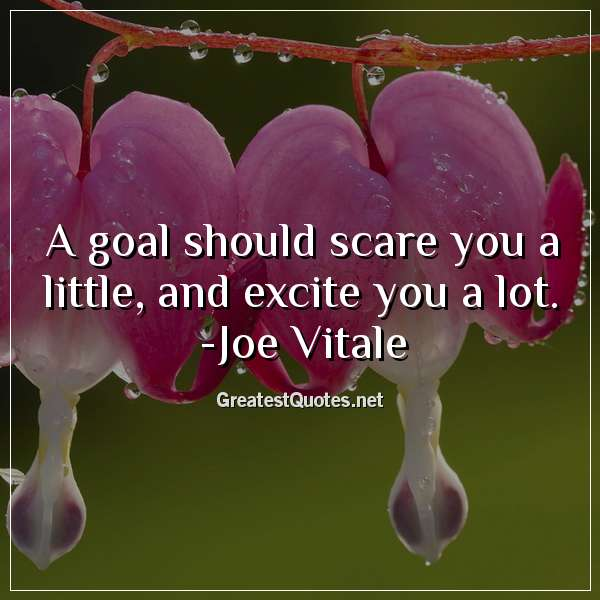 A goal should scare you a little, and excite you a lot. - Joe Vitale