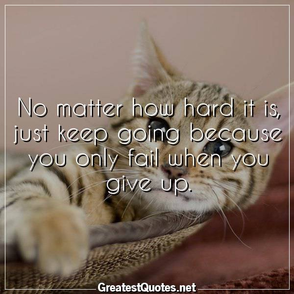 Quote: No matter how hard it is, just keep going because you only fail when you give up.
