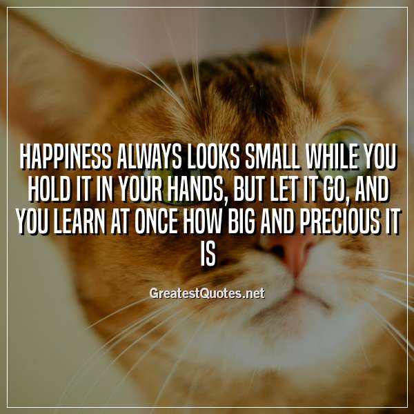 Happiness always looks small while you hold it in your hands, but let it go, and you learn at once how big and precious it is