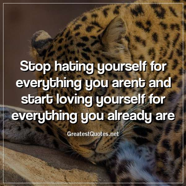 Stop hating yourself for everything you arent and start loving yourself for everything you already are.