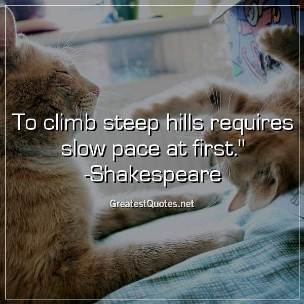 To climb steep hills requires slow pace at first. -Shakespeare