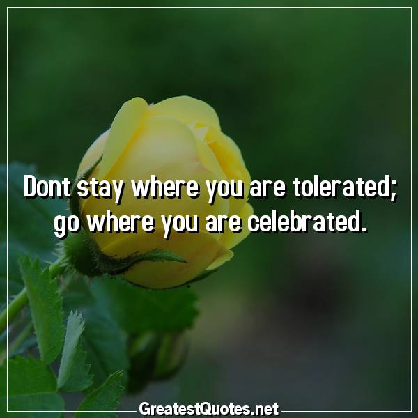 Quote: Dont stay where you are tolerated; go where you are celebrated.