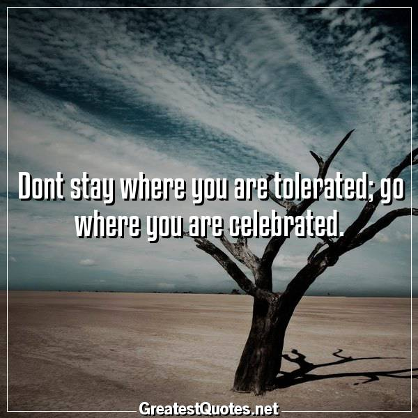 Dont stay where you are tolerated; go where you are celebrated.