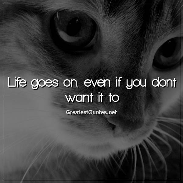 Life goes on, even if you dont want it to.