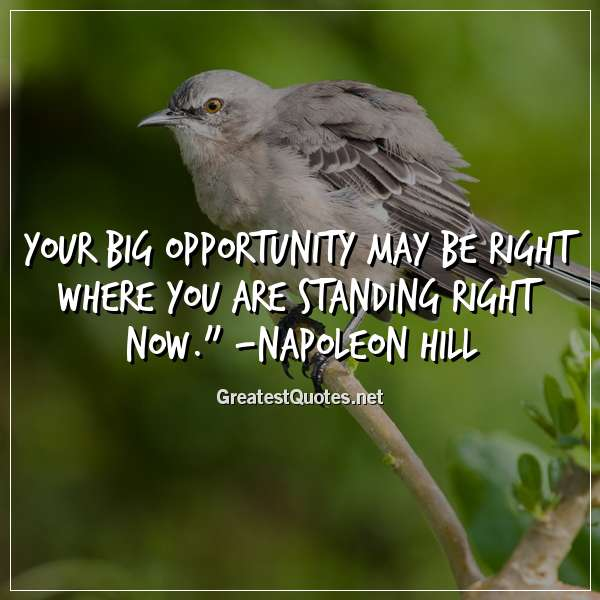 Quote: Your big opportunity may be right where you are standing right now. - Napoleon Hill