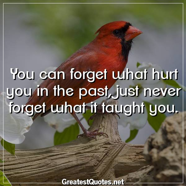 Quote: You can forget what hurt you in the past, just never forget what it taught you.