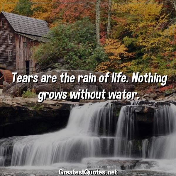Tears are the rain of life. Nothing grows without water