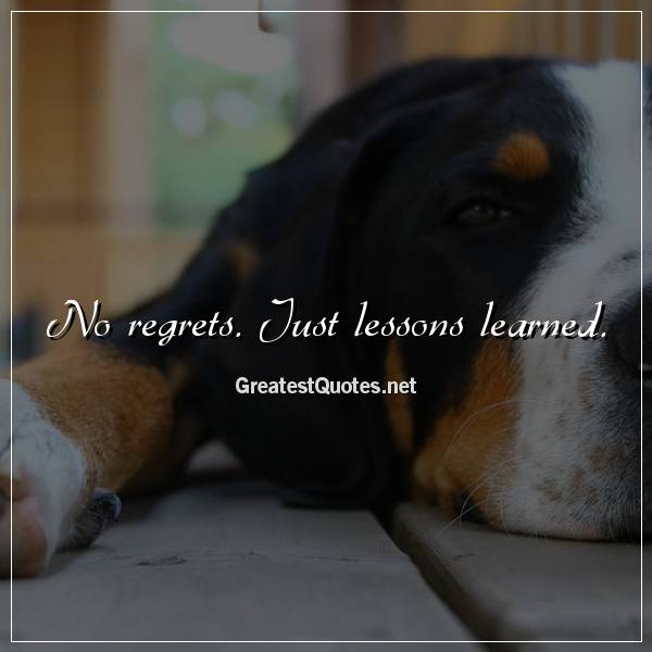 No regrets. Just lessons learned.