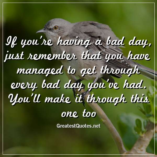 If you\'re having a bad day, just remember that you have ...