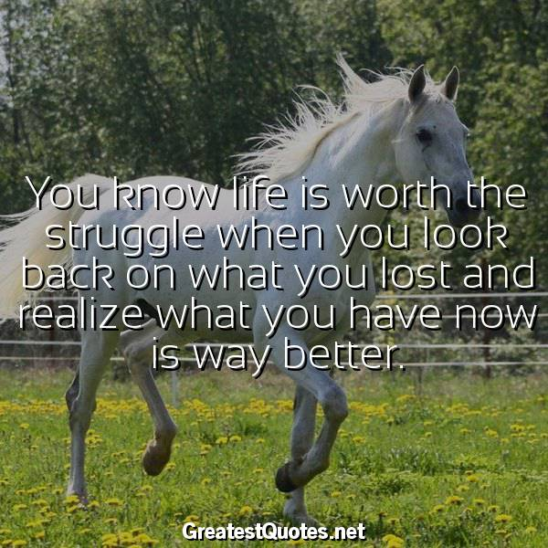 Quote: You know life is worth the struggle when you look back on what you lost and realize what you have now is way better.