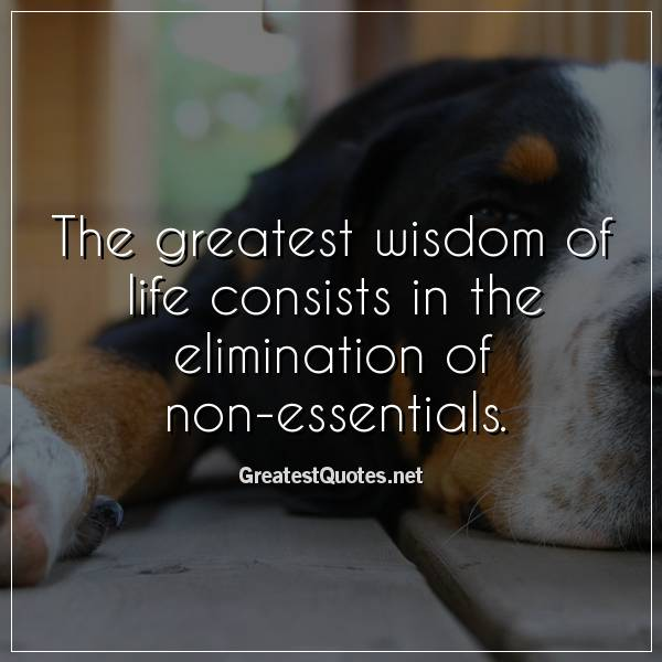 The greatest wisdom of life consists in the elimination of non-essentials.