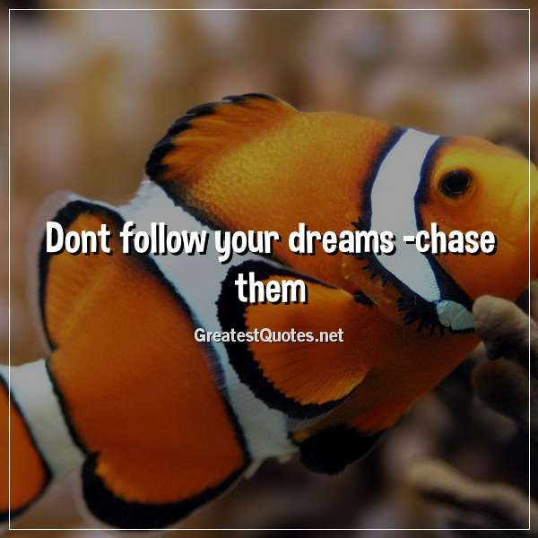Dont follow your dreams -chase them