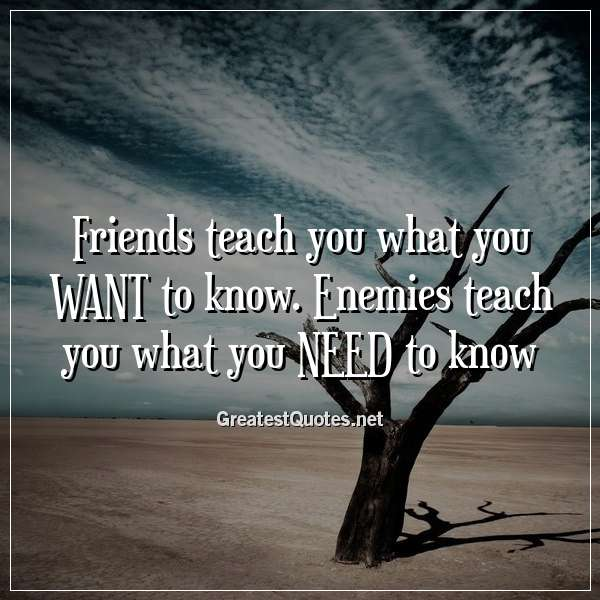 Friends teach you what you WANT to know. Enemies teach you what you NEED to know.
