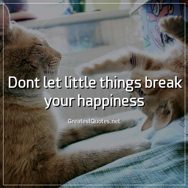Dont let little things break your happiness.