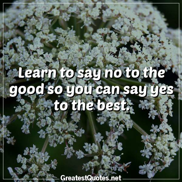 Quote: Learn to say no to the good so you can say yes to the best.