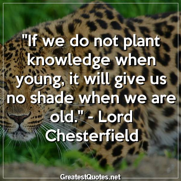 Quote: If we do not plant knowledge when young, it will give us no shade when we are old. - Lord Chesterfield