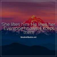 She likes him. He likes her. Everyone knows. Except them.