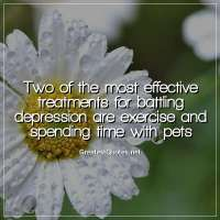 Two of the most effective treatments for battling depression are exercise and spending time with pets.