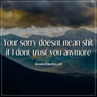 Your sorry doesnt mean shit if I dont trust you anymore
