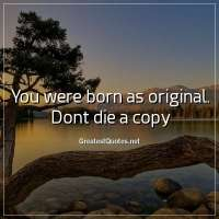 You were born as original. Dont die a copy.