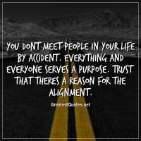 You dont meet people in your life by accident. Everything and everyone serves a purpose. Trust that theres a reason for the alignment