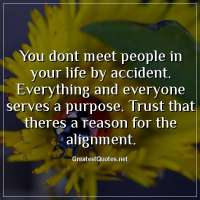 You dont meet people in your life by accident. Everything and everyone serves a purpose. Trust that theres a reason for the alignment.