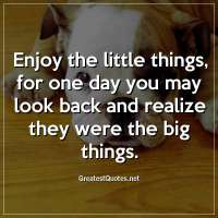 Enjoy the little things, for one day you may look back and realize they were the big things
