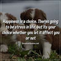 Happiness is a choice. Theres going to be stress in life, but its your choice whether you let it affect you or not.