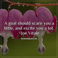 A goal should scare you a little, and excite you a lot. -Joe Vitale