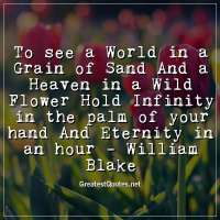 To see a World in a Grain of Sand And a Heaven in a Wild Flower Hold Infinity in the palm of your hand And Eternity in an hour -William Blake