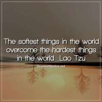 The softest things in the world overcome the hardest things in the world. -Lao Tzu