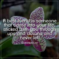 A best friend is someone that came into your life, sticked with you through ups and downs and never left