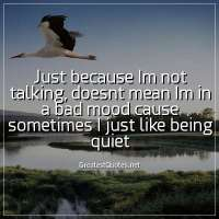 Just because Im not talking, doesnt mean Im in a bad mood cause sometimes I just like being quiet
