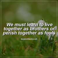 We must learn to live together as brothers or perish together as fools