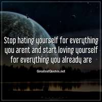 Stop hating yourself for everything you arent and start loving yourself for everything you already are