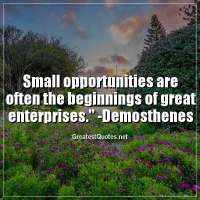 Small opportunities are often the beginnings of great enterprises. -Demosthenes
