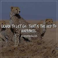 Learn to let go. That is the key to happiness.