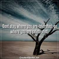 Dont stay where you are tolerated, go where you are celebrated
