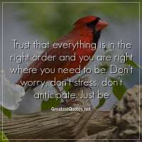 Trust that everything is in the right order and you are right where you need to be. Don't worry, don't stress, don't anticipate. Just be