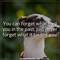 You can forget what hurt you in the past, just never forget what it taught you.