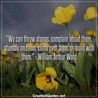 We can throw stones, complain about them, stumble on them, climb over them, or build with them. - William Arthur Ward
