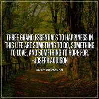 Three grand essentials to happiness in this life are something to do, something to love, and something to hope for. -Joseph Addison