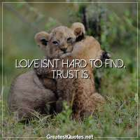 Love isnt hard to find, trust is.