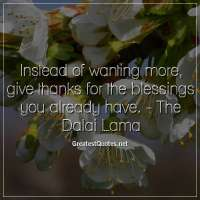 Instead of wanting more, give thanks for the blessings you already have. -The Dalai Lama
