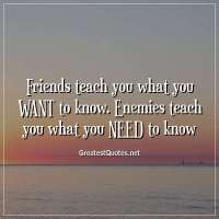 Friends teach you what you WANT to know. Enemies teach you what you NEED to know