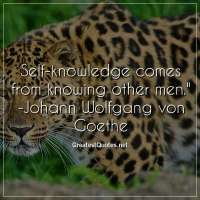 Self-knowledge comes from knowing other men. - Johann Wolfgang von Goethe