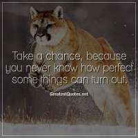 Take a chance, because you never know how perfect some things can turn out