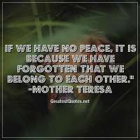 If we have no peace, it is because we have forgotten that we belong to each other. - Mother Teresa